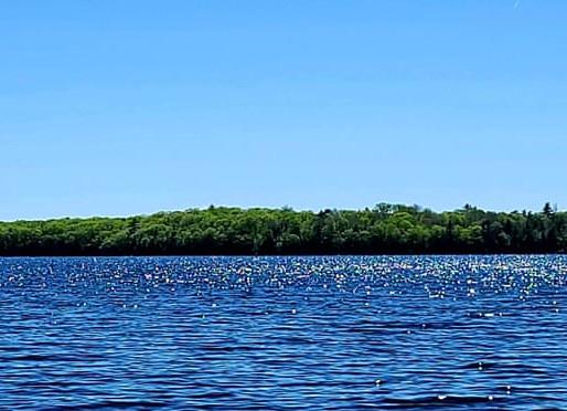 Native American Tribe Buys Back Maine Island