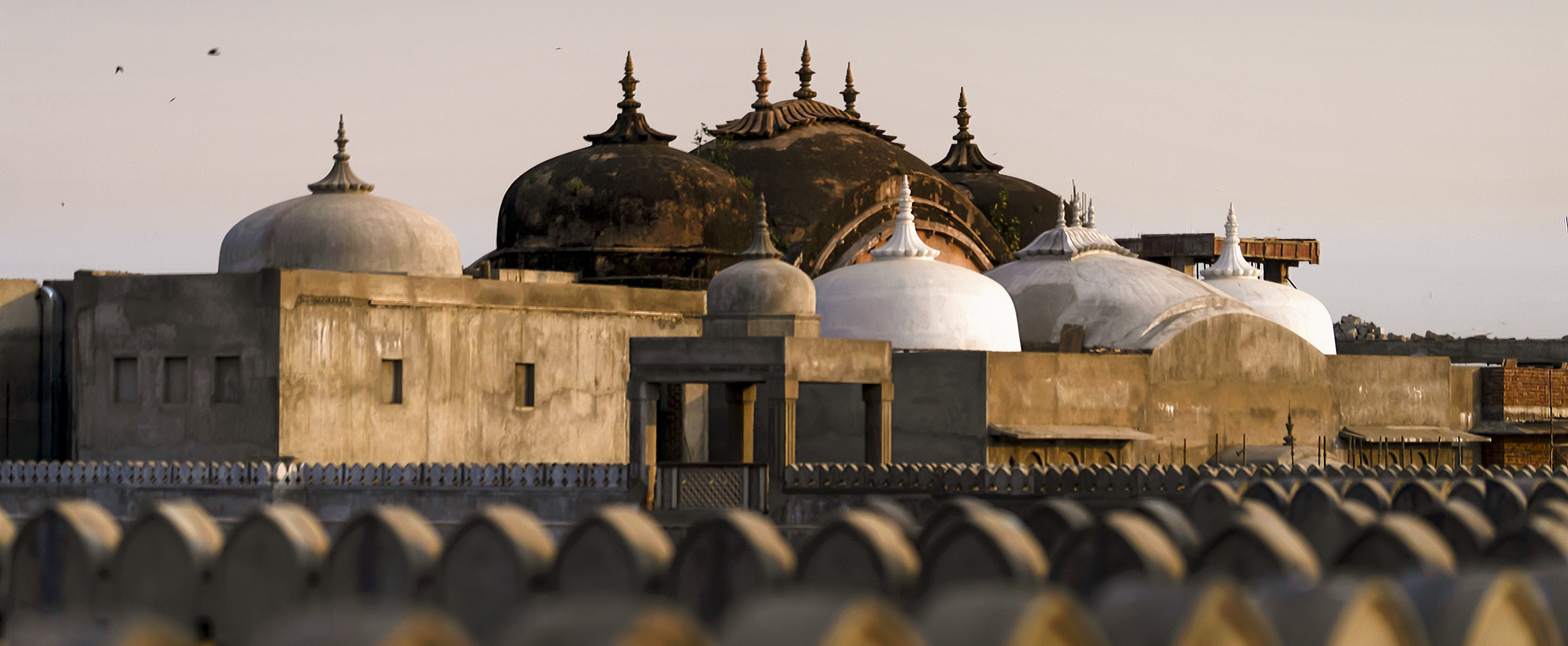 tailor-made-holidays-india
