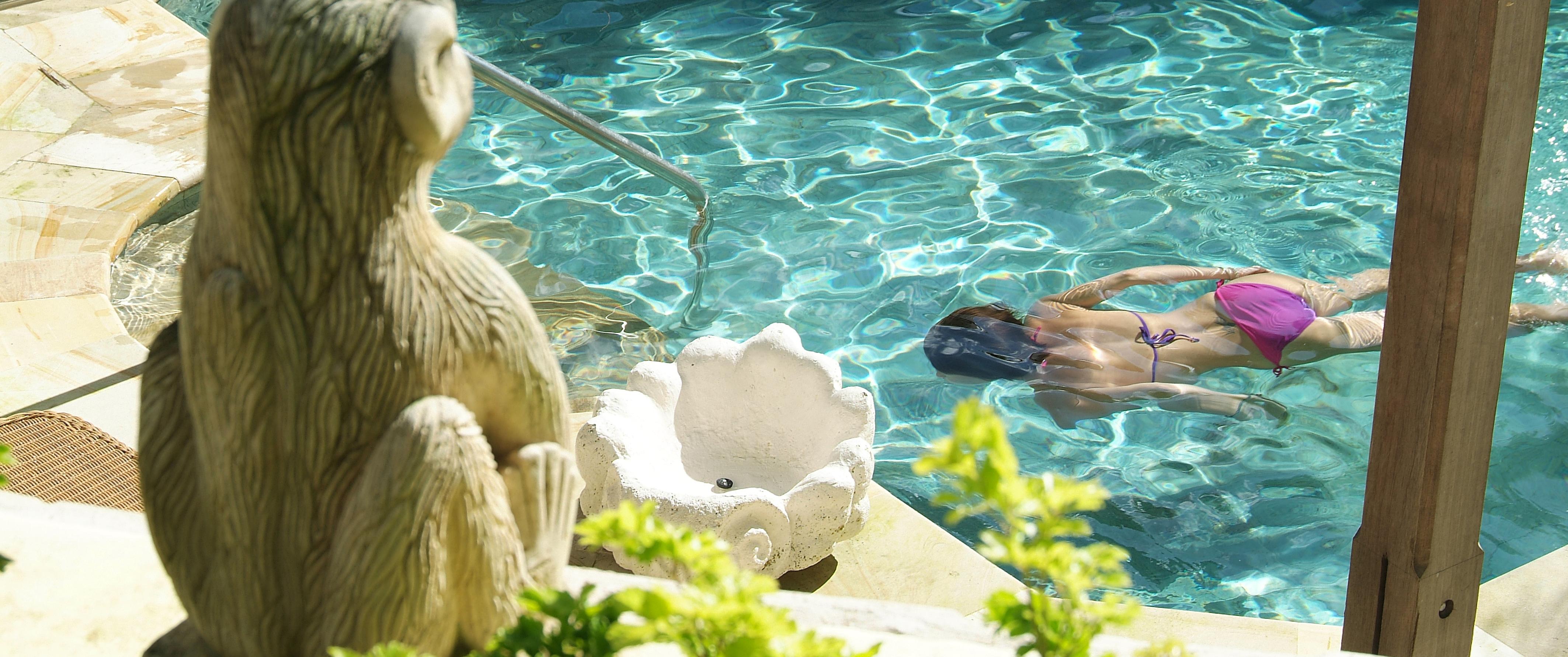 Oasis-Pool-little-good-harbour