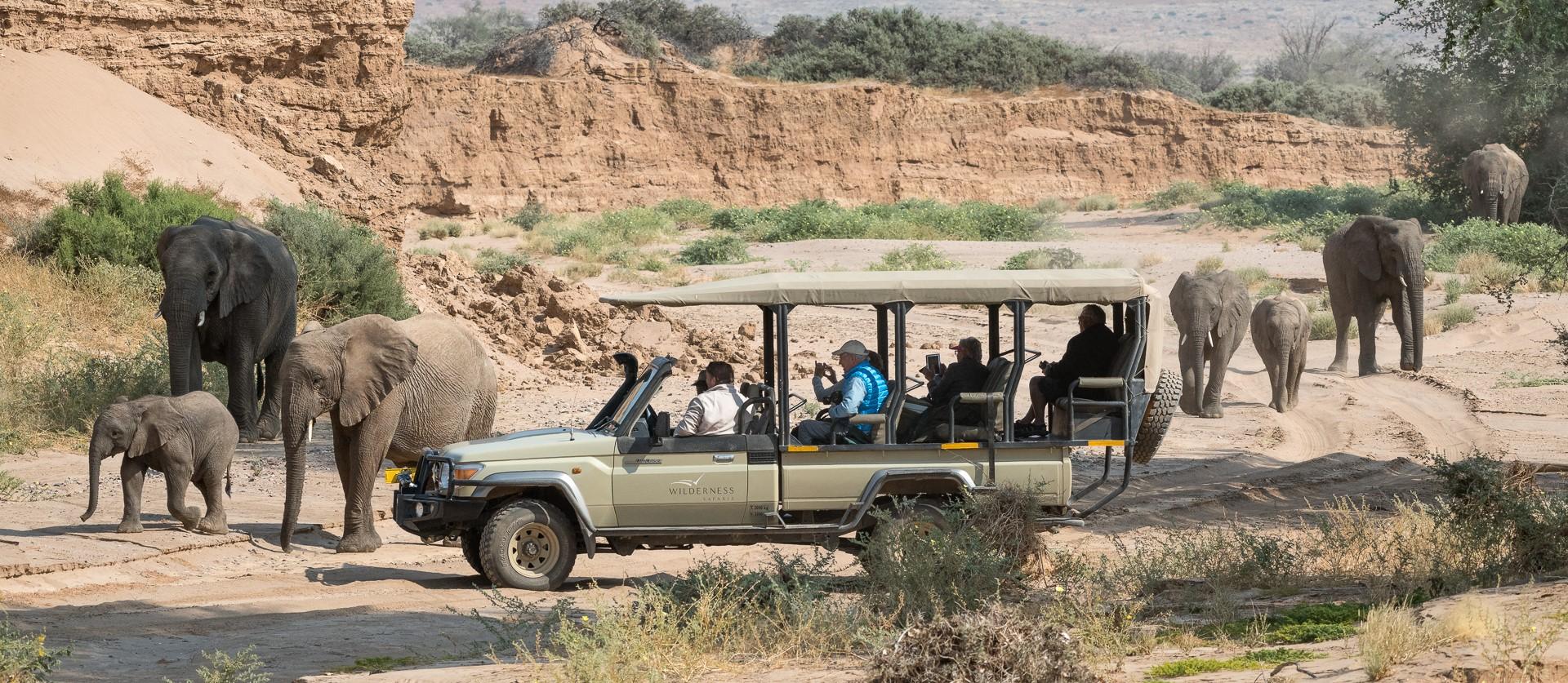 damaraland_camp_namibia_game_drive