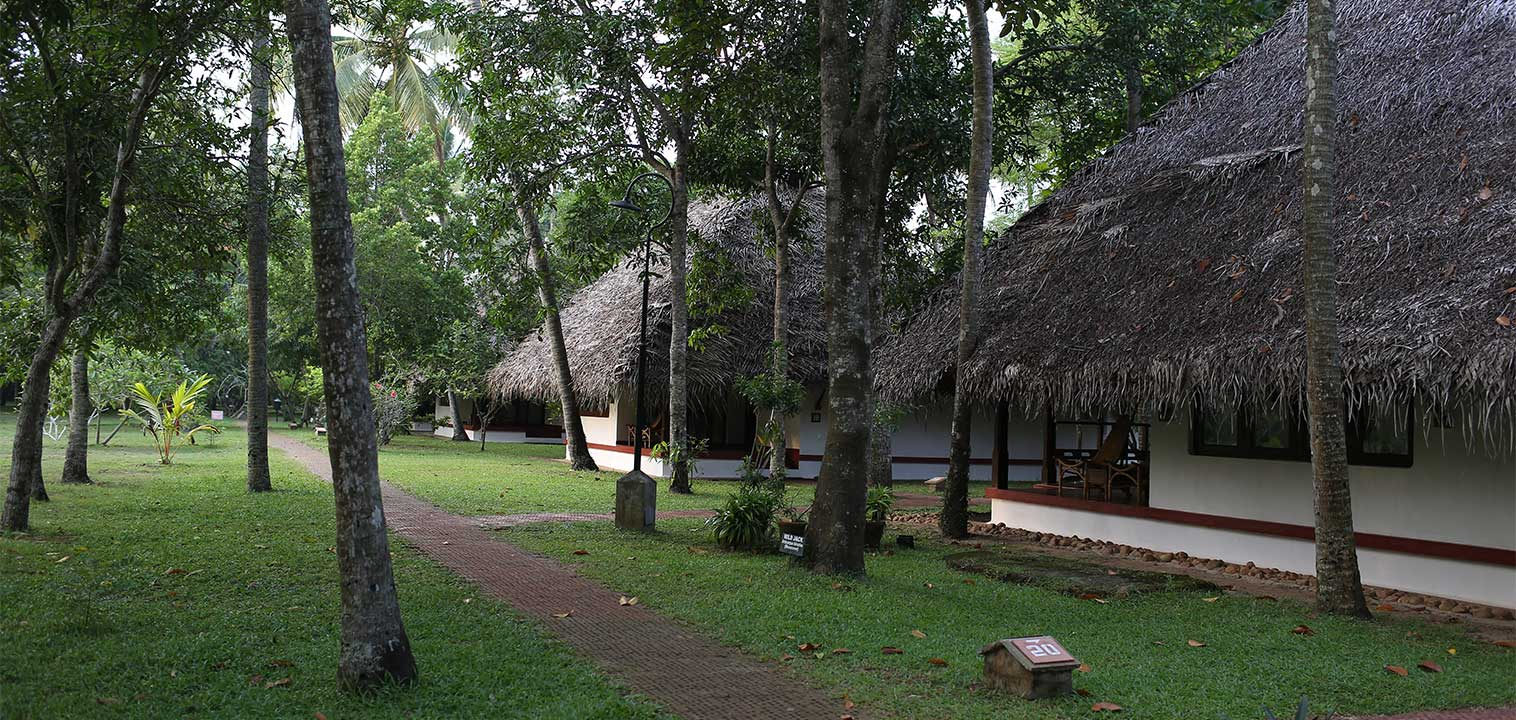 garden-villas-marari-beach-resort