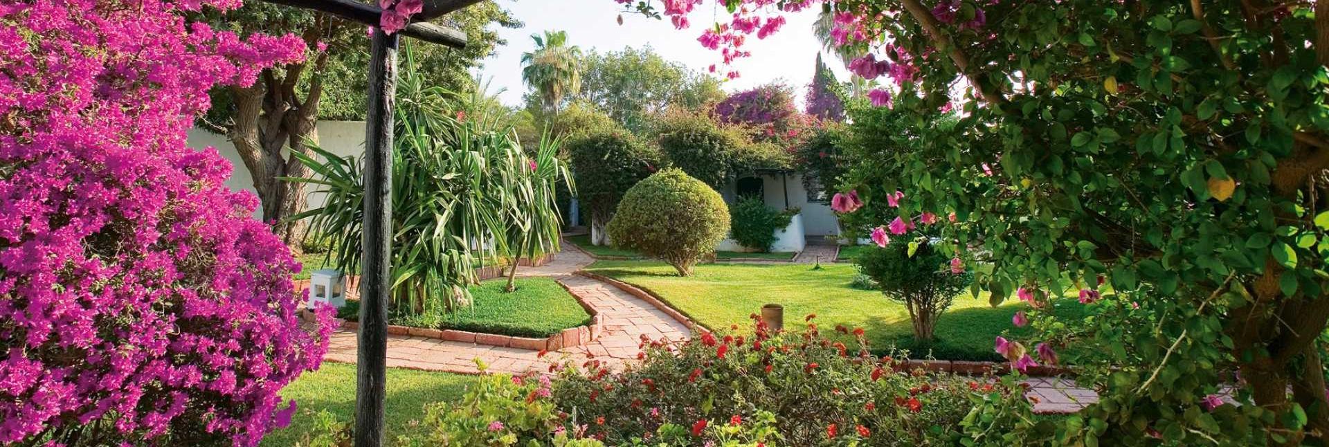 sofitel-agadir-royal-bay-resort-gardens
