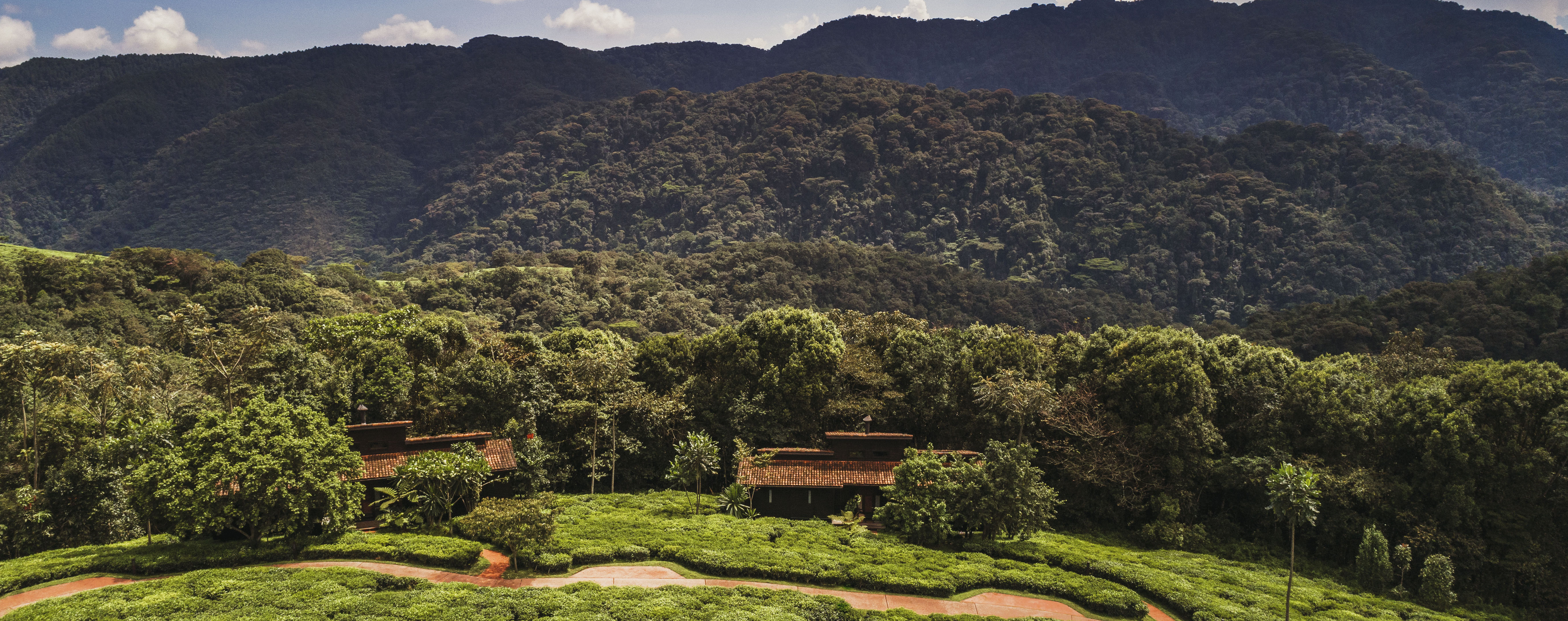 luxury-tailor-made-tour-nyungwe
