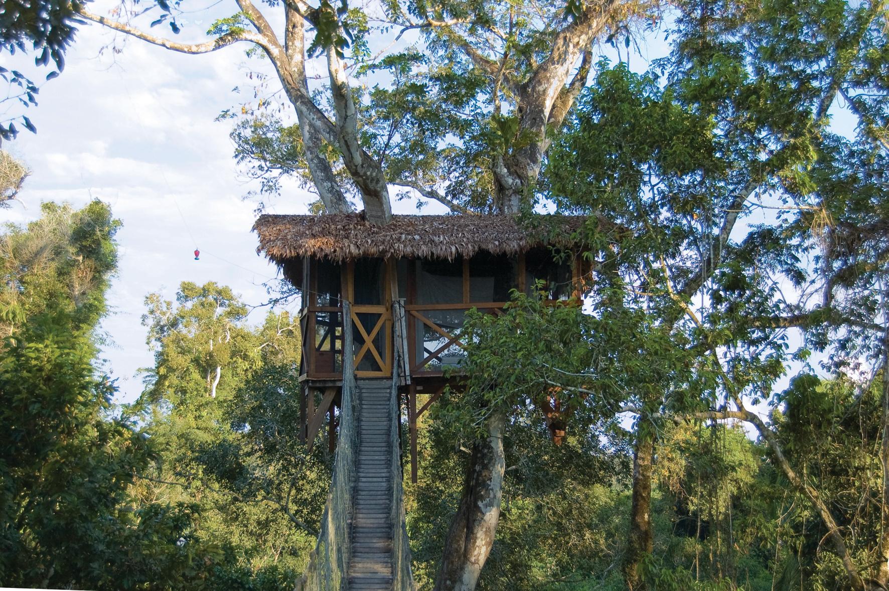 canopy-treehouse-reserva-amazonica
