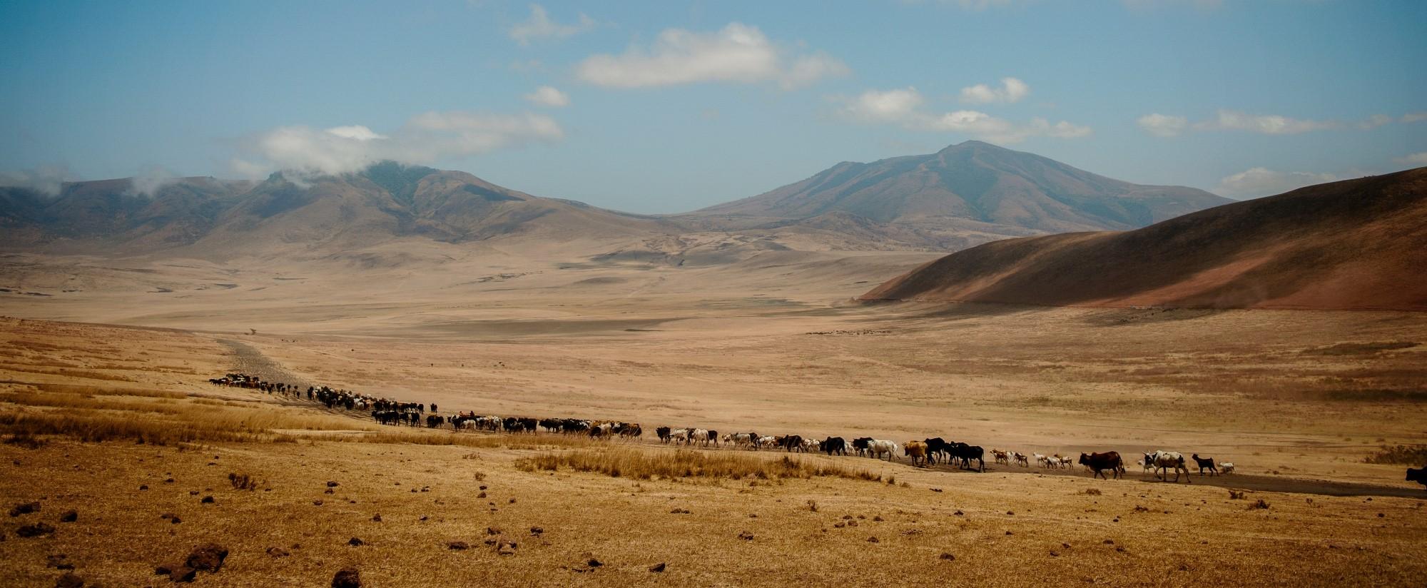 luxury-tailor-made-safari-ngorongoro