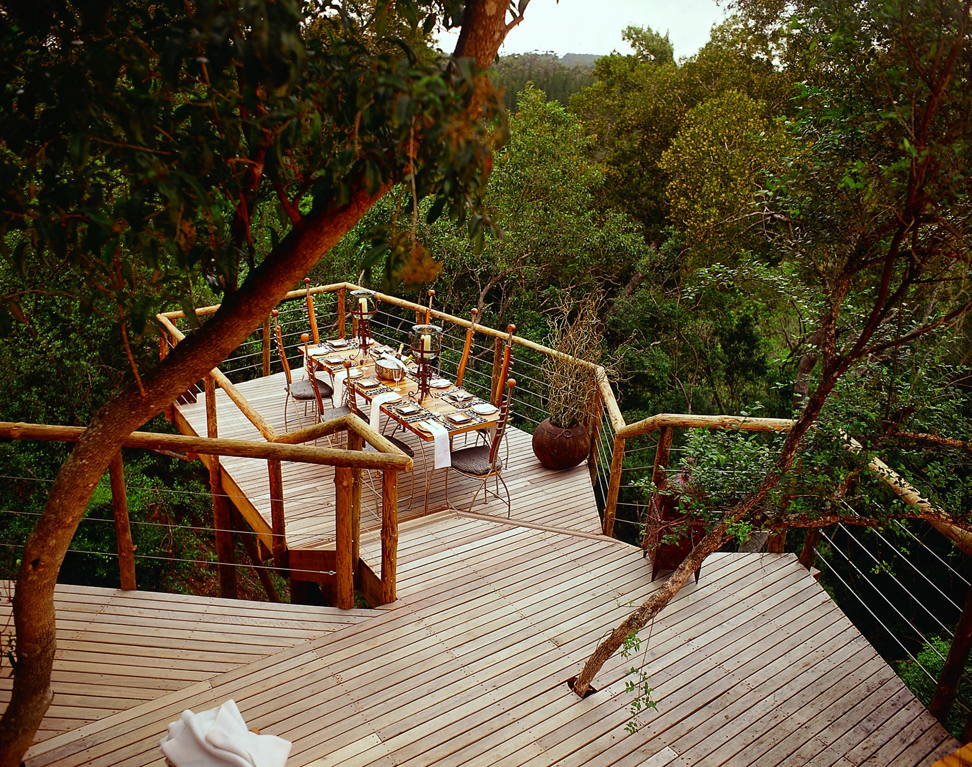 tsala-treetop-lodge-dining