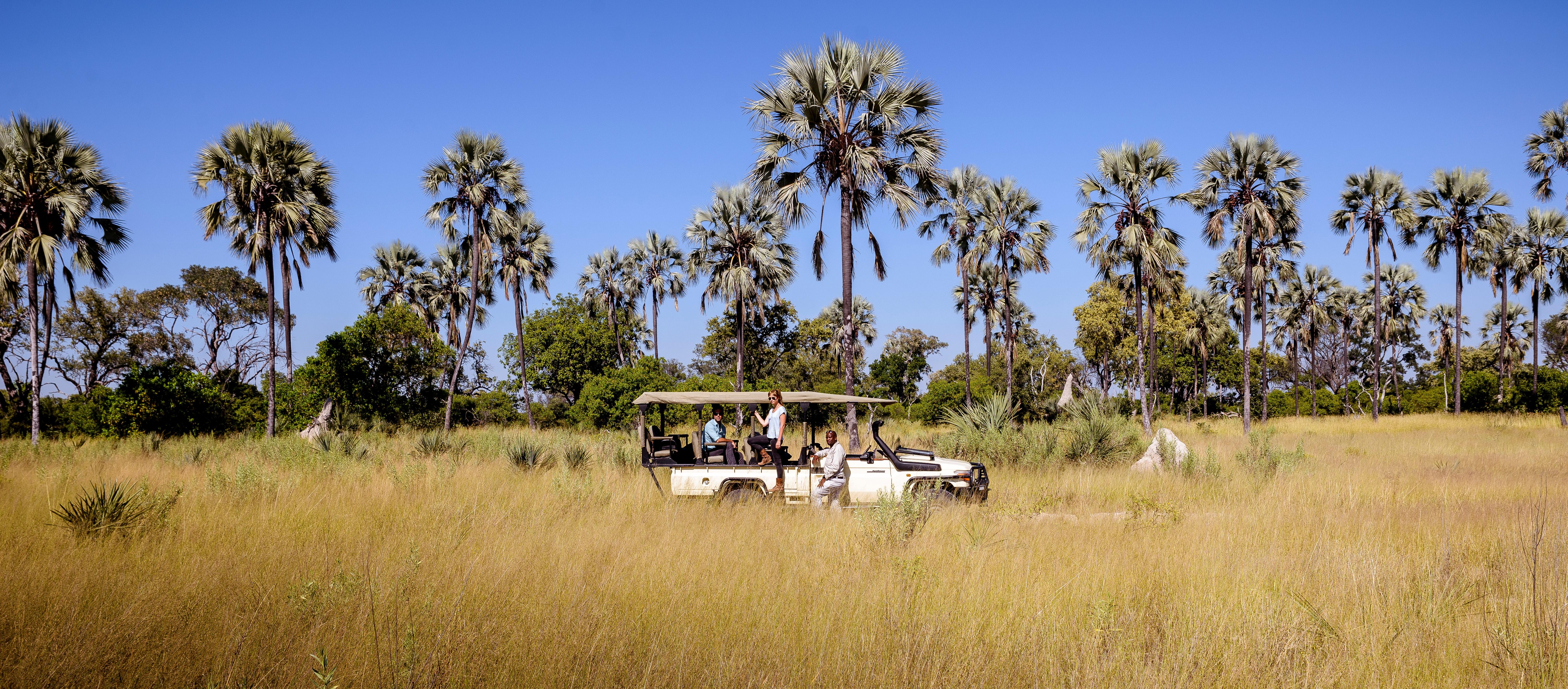 game-drive-okavango-delta