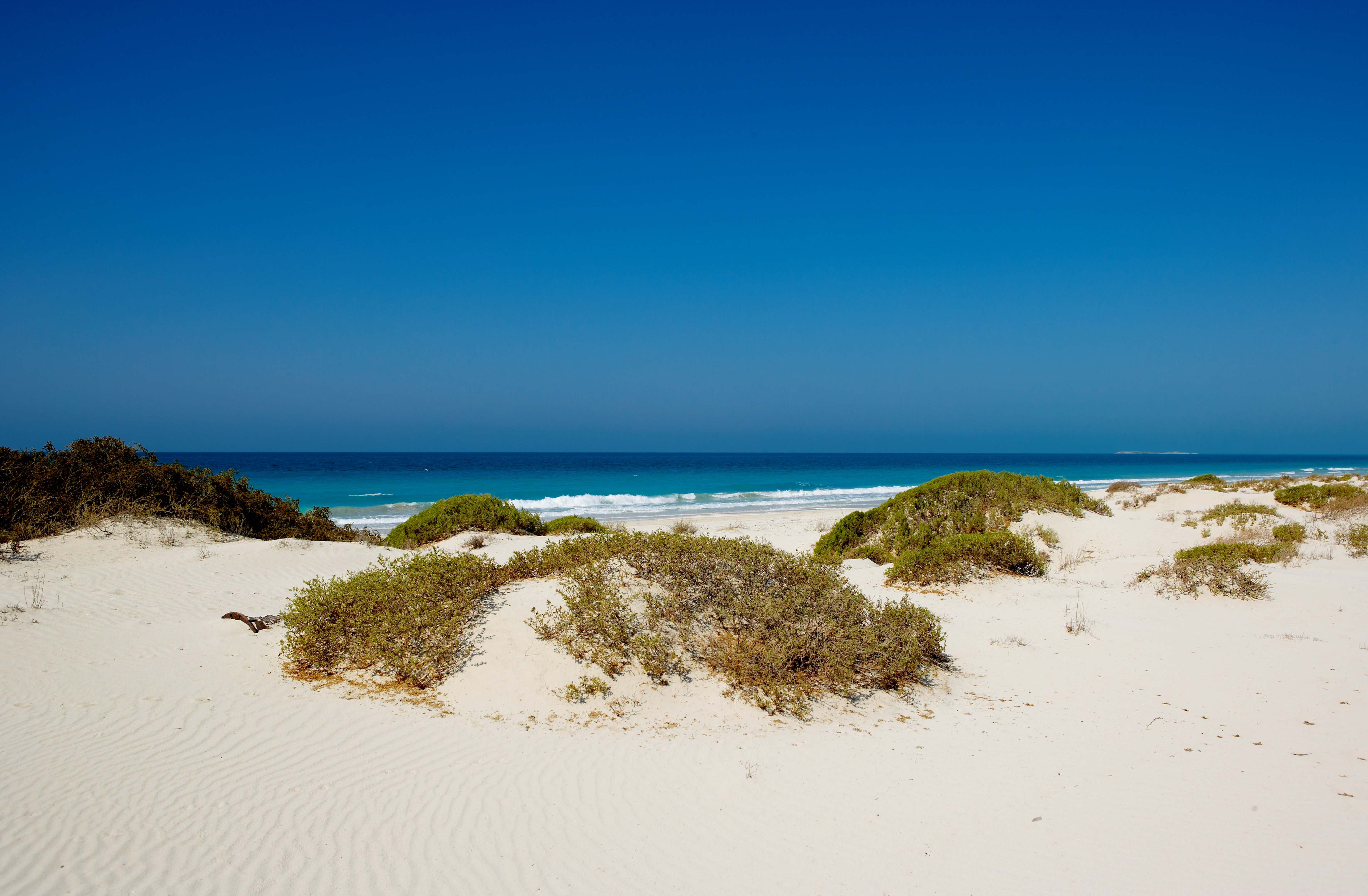 st-regis-saadiyat-island-beach