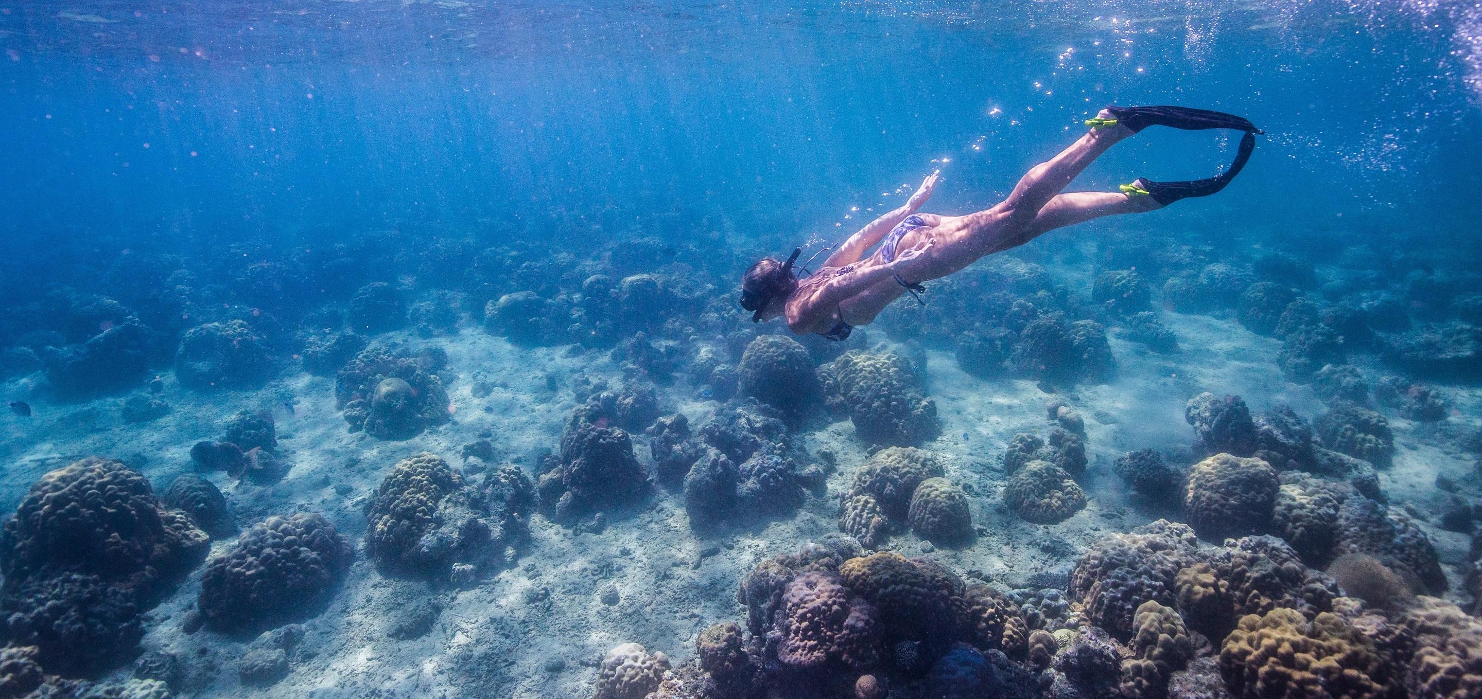 azura_quilalea_snorkeling_indian_ocean
