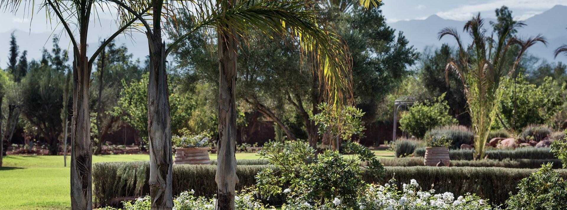 dar-yasmina-landscaped-gardens