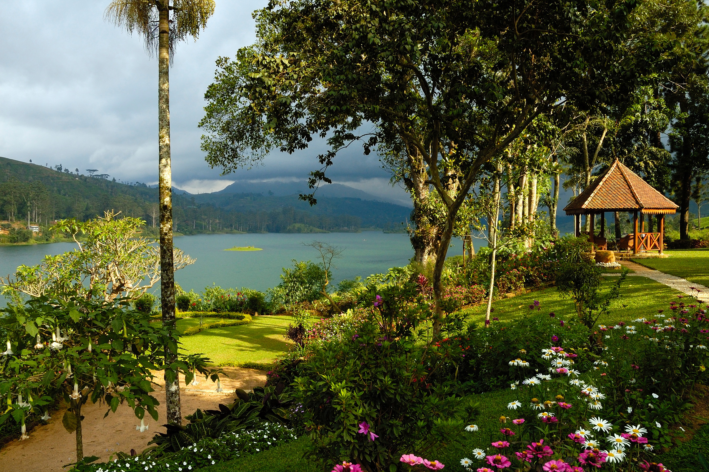 lake-view-ceylon-tea-trails