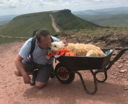 Man Takes Dog For One Last Walk
