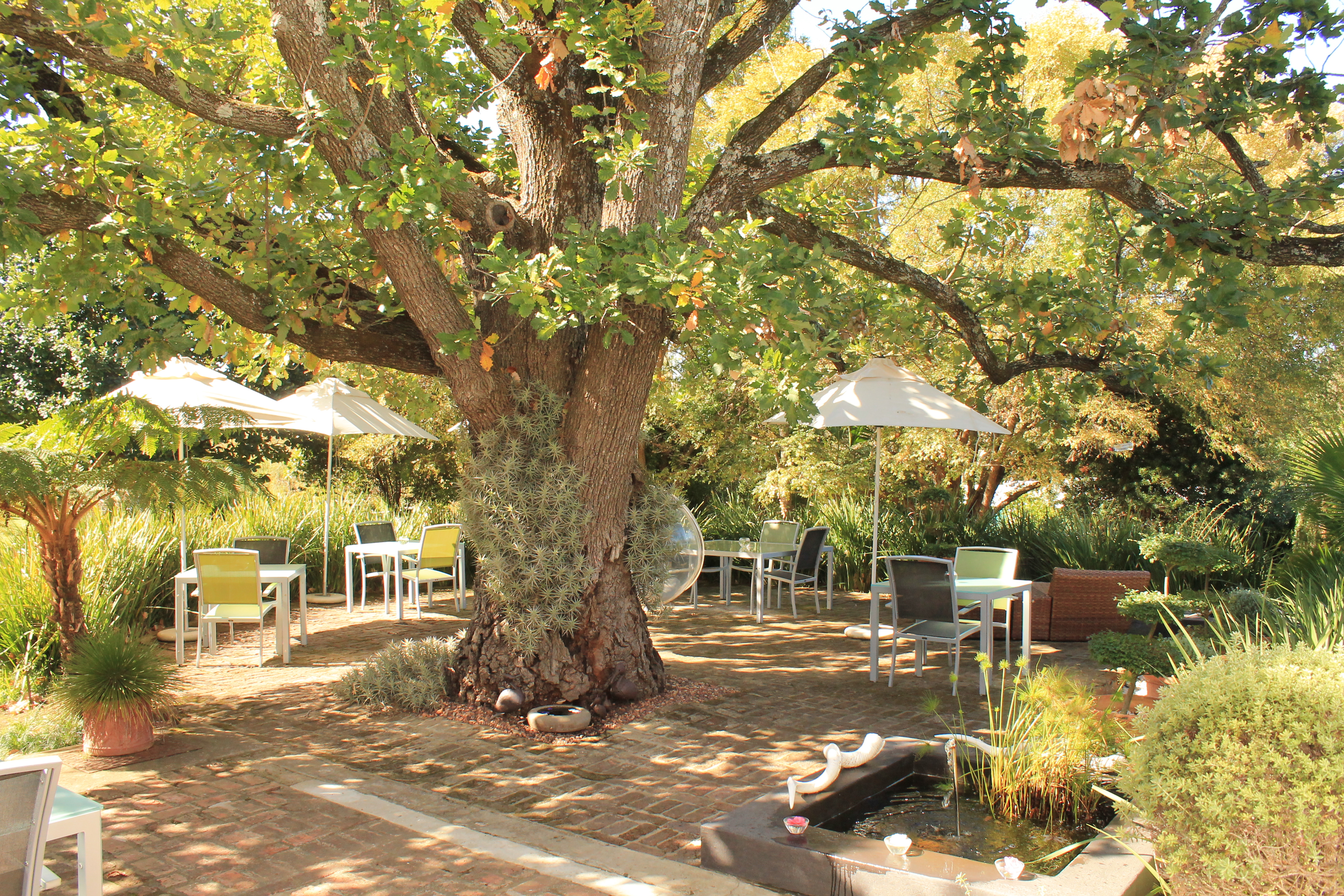 rothman-manor-garden-route