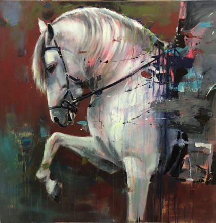 DRESSAGE IV, acrylic over canvas. (100x100cm)