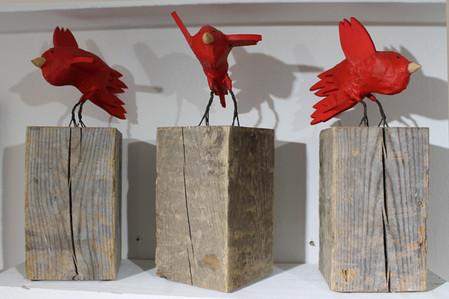 2nd Grade Cardinal Landing on Post
