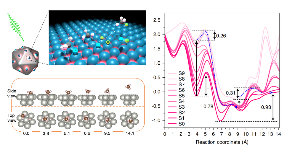 "H. Robatjazi, J. L. Bao, M. Zhang, L. Zhou, P. Christopher, E. A. Carter, P. Nordlander, and N. J. Halas, ""Plasmon-Driven Carbon-Fluorine (C(sp3)-F) Bond Activation with Mechanistic Insights into Hot-Carrier-Mediated Pathways"", Nature Catalysis, 3, 564–573 (2020)"