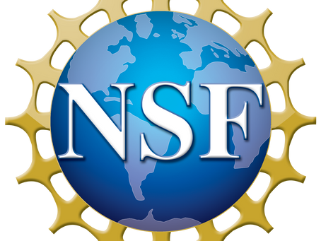 Our collaborative project is funded by National Science Foundation (NSF)