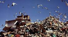 Waste 0001.jpg