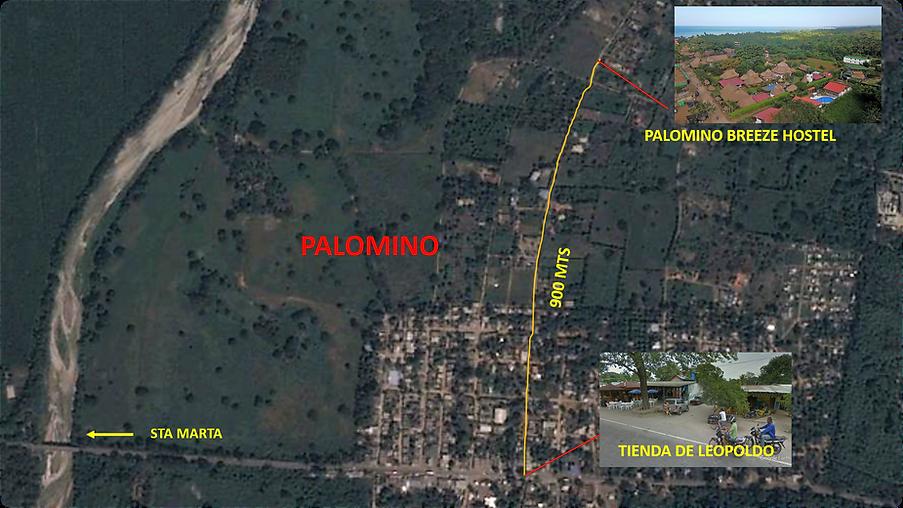 RUTA PALOMINO 3.png