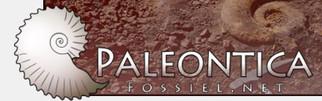 fossiel.net