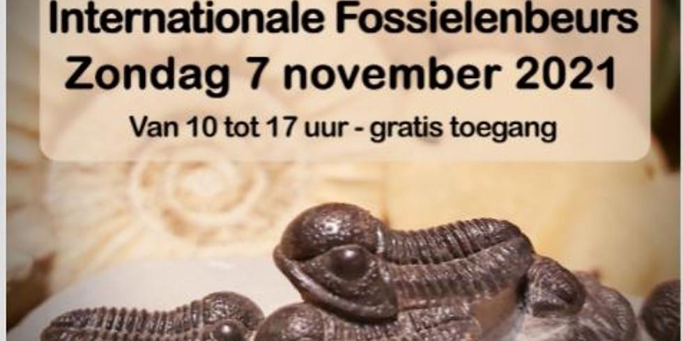 fossielenbeurs Paleotime Belgie