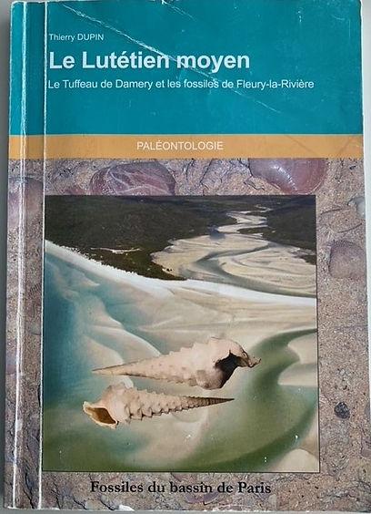 Le Lutétien moyen Le Tuffeau de Damery et les fossiles de Fleury-la-Rivière