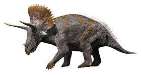 Triceratops4_NT_small.jpg