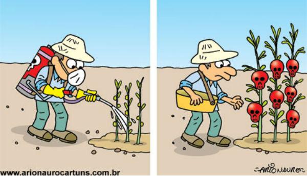 As velhas-novas políticas agrícolas