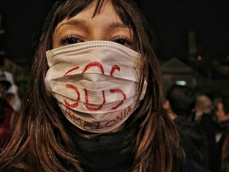 Brasil: O país do desacordo ambiental