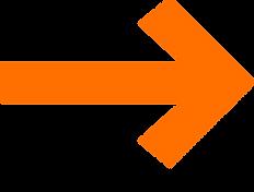 SEU_arrow_orange_edited.png