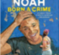 born a crime - book image.jpg