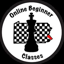 onlinebeginnerclasses2.png