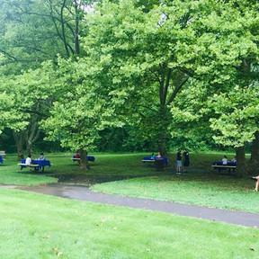 Forsythia Crossing Park Tournaments