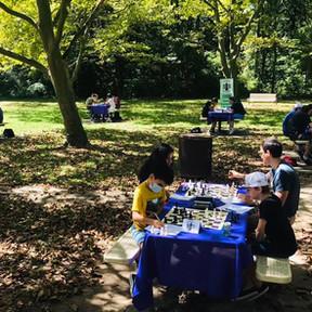 Forsythia Crossing Park Tournament