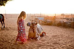 desert-safari-dubai-_-desert-dubai-_-how