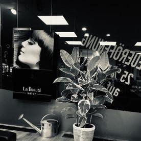 Salon La Beaute Krefeld
