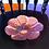 Thumbnail: Sunflower Bowl