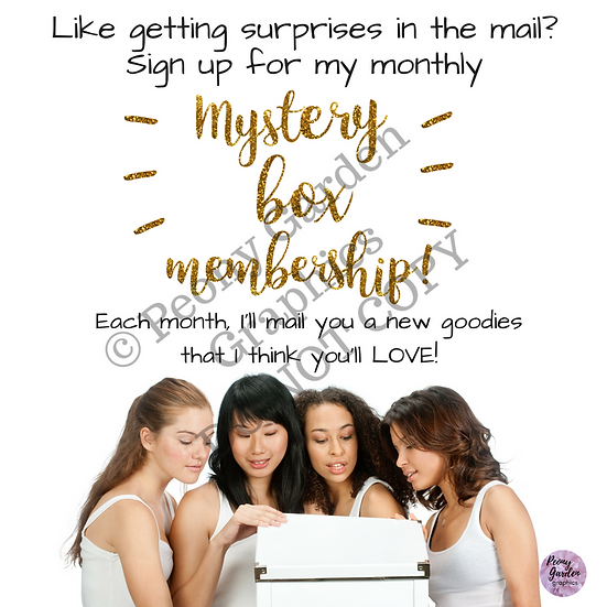 Monthly Mystery Box Membership Flier