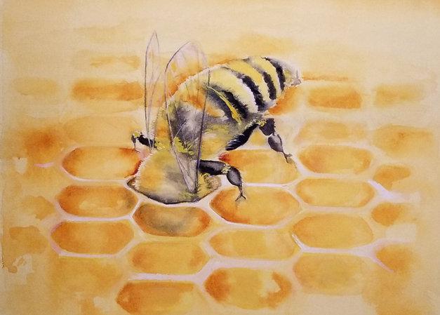 Let me bee your honey Bee