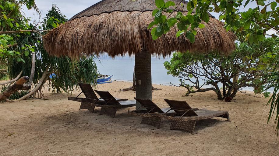 pili_beach_coconut_seafront.jpg