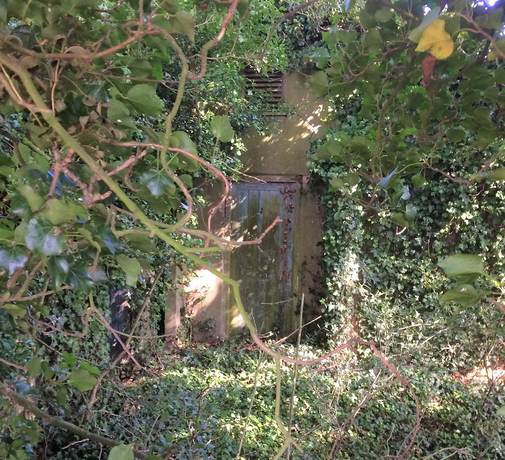 The end of the Nissen hut through the gap in the hedge