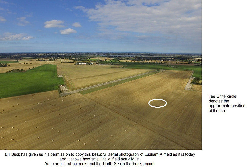 Photograph of Ludham airfield with a circle showing the site of where the tree would have stood. Courtesy of Bill Buck