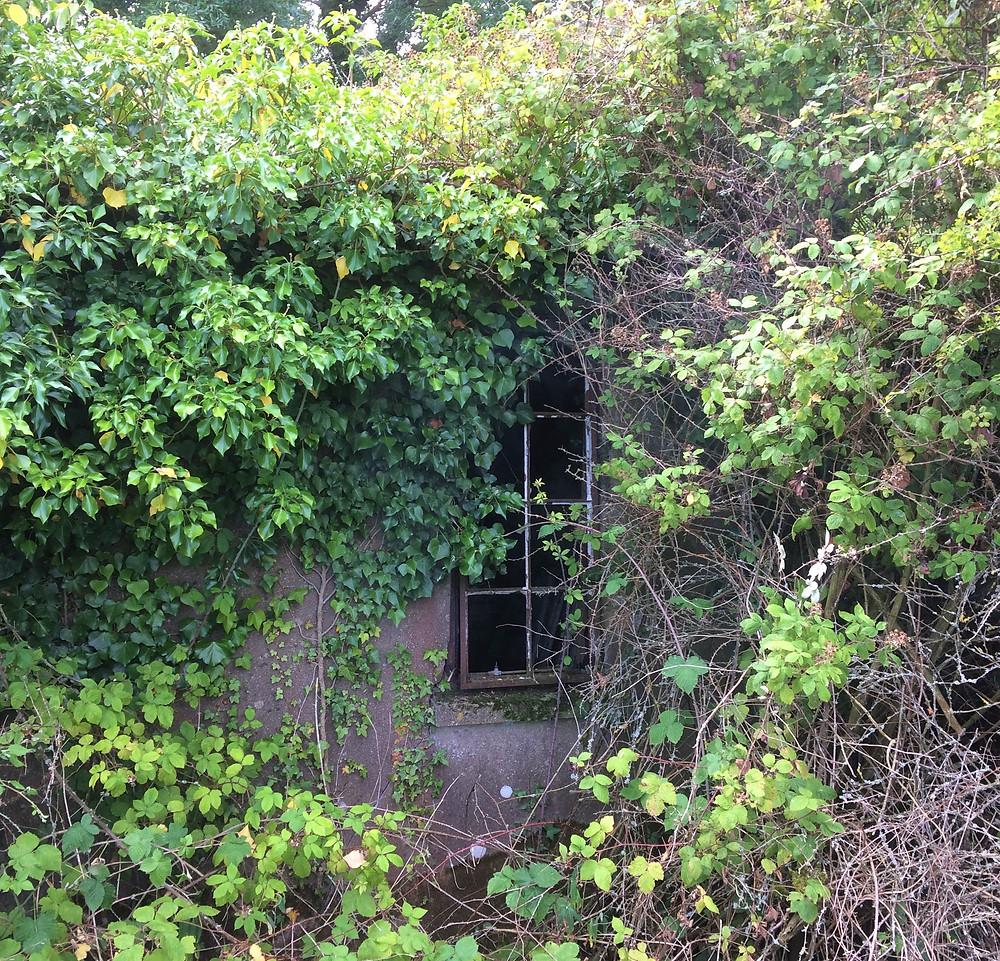 The other Nissen hut