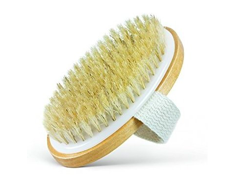 Dry Brush without handle