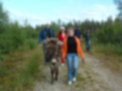 Ezel wandelen3.jpg