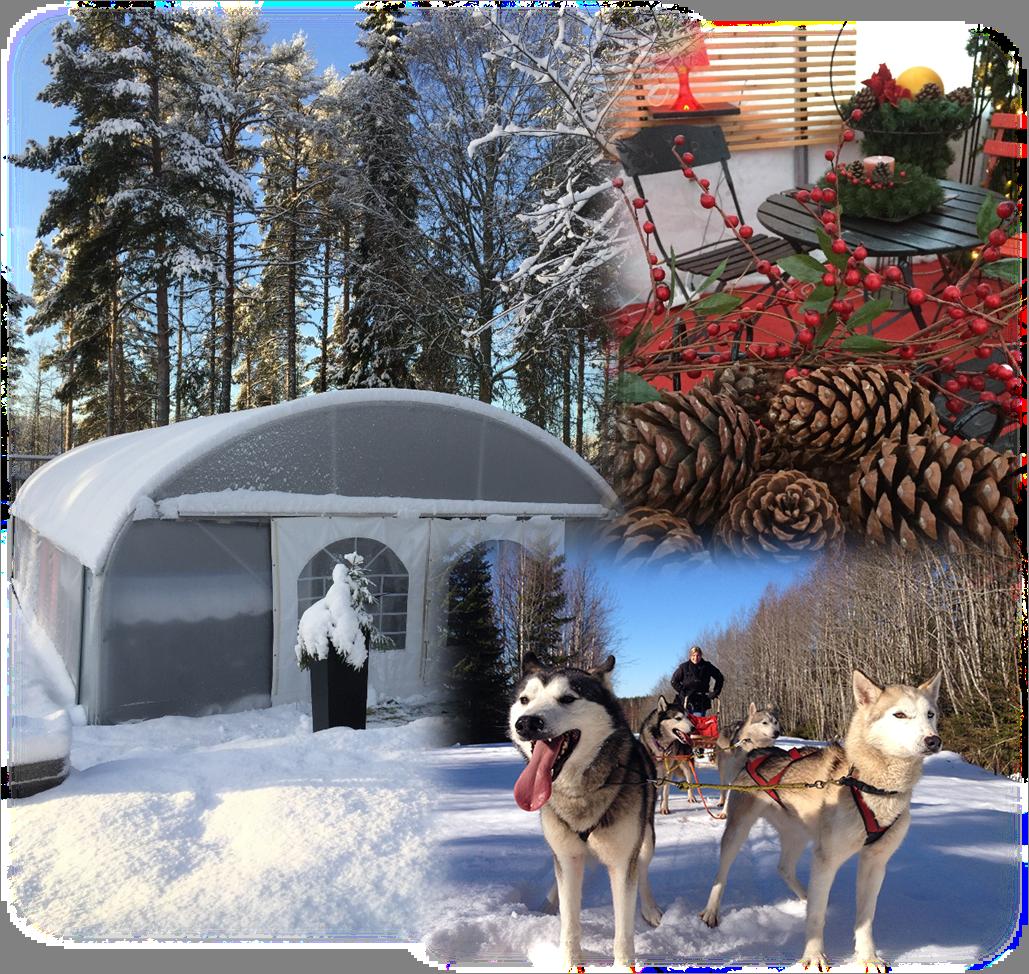 Visit our winter café
