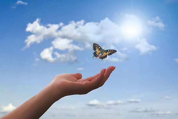 hand-clouds-butterfly_640.jpg