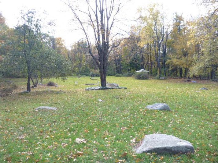 Fare Thee Well Meadow w Single Tree_n.jp