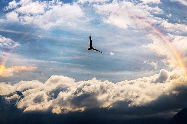 sky-Meditations_640.jpg