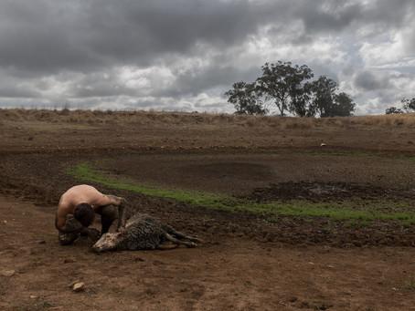 Disaster & Drought Response